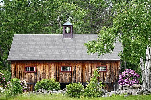 Barn in Spring by Sonia Ascher