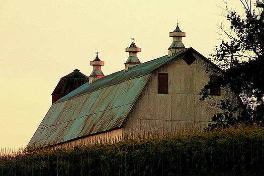 Barn at Sunset  by Bethany Benike