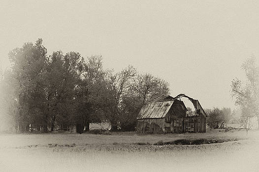 Barn in the Mist by Joe Sparks