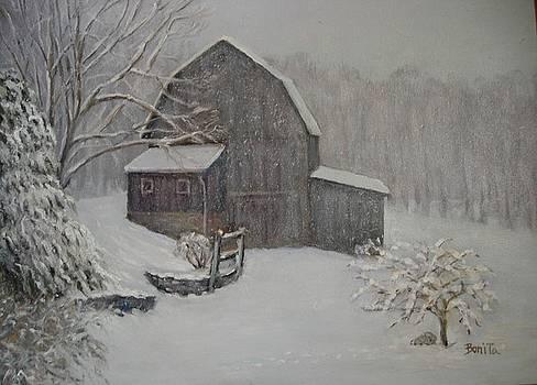 Barn in Up State New York by Bonita Waitl
