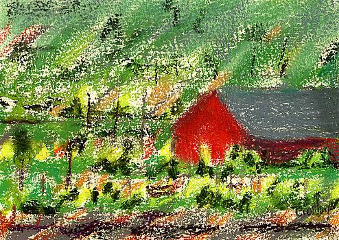 Barn In Vineyard by Donna Crosby