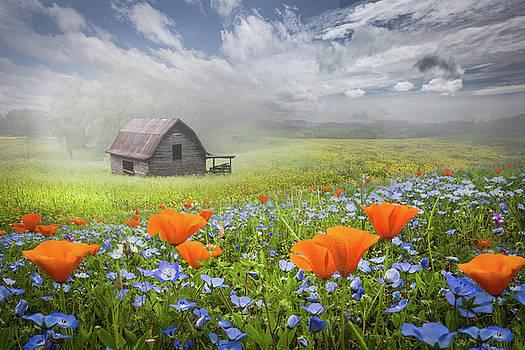 Debra and Dave Vanderlaan - Barn in Wildflowers on a Foggy Morning