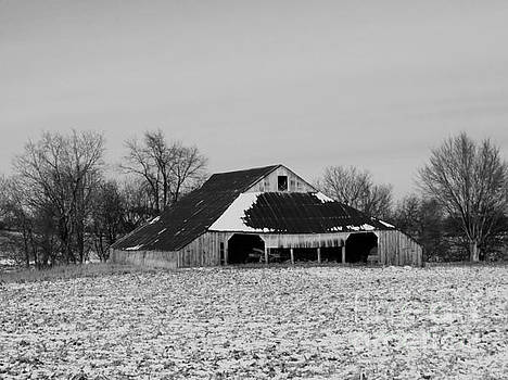 Barn  by J L Zarek