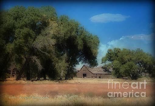 Barn Landscape  by Bobbee Rickard