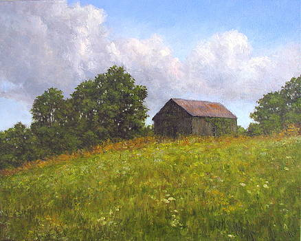 Barn on a Hill by Stephen Howell