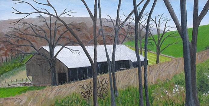 Barn on Hill Crystal Farm by Barb Pennypacker