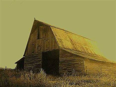Barn On The Road To Elgin by Scarlett Chambers