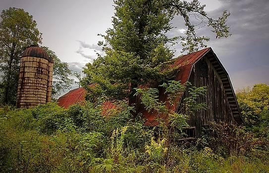Barn Overgrown by Scott Fracasso