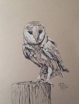 Barn Owl 08252015 by Lynne Hurd Bryant