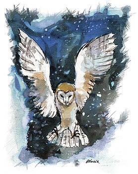 Barn owl 2018 05 18 a by Angel Ciesniarska