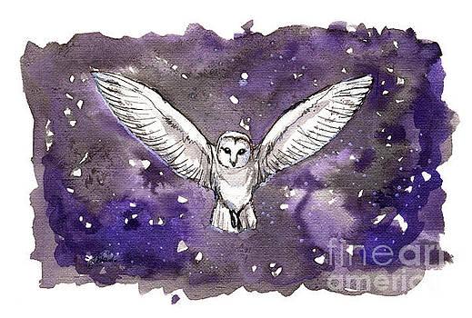 Barn owl 2018 05 18 by Angel Ciesniarska