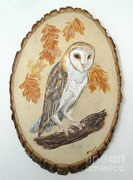 Barn Owl - Enduring Insight by Brandy Woods