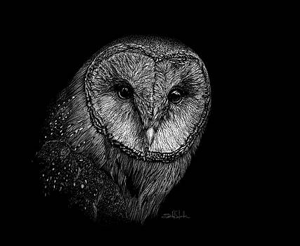 Barn Owl II by Isabel Salvador