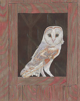 Barn Owl in Residence by Arlene Crafton