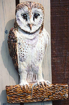 Barn Owl Sculpture by Dy Witt