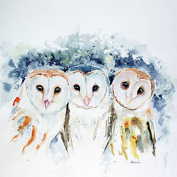 Barn Owls by Isabel Salvador
