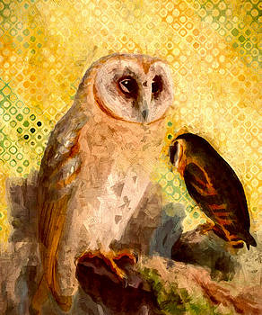 John K Woodruff - Barn Owls