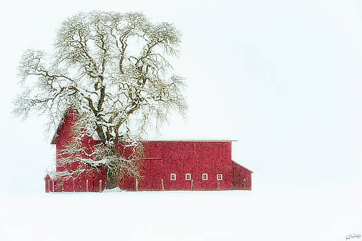 Barn Red Winter by Dee Browning