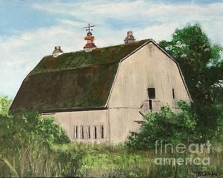 Barn, Rte 12e, Clayton, NY by Joel Charles