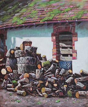 Martin Davey - Barn with log pile