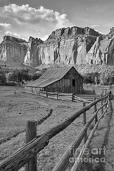 Barn With Mountains by Debbie Green