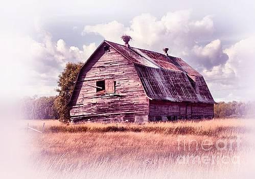 Matthew Winn - Barn with Osprey Nest