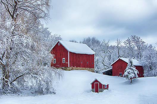Barns in Winter by Eleanor Bortnick