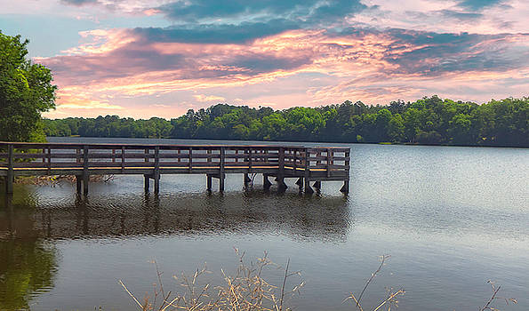 Barnwell Lake by David Palmer