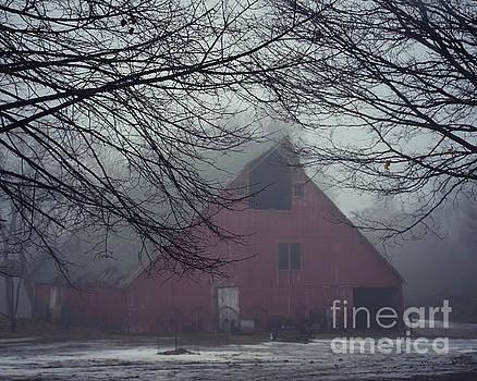 Barnyard Blanketed By Fog by Kathy M Krause