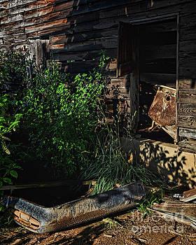 Barnyard Leftovers by Randy Rogers