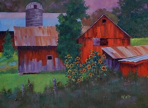 Barnyard Sunflowers by Phil Hewitt