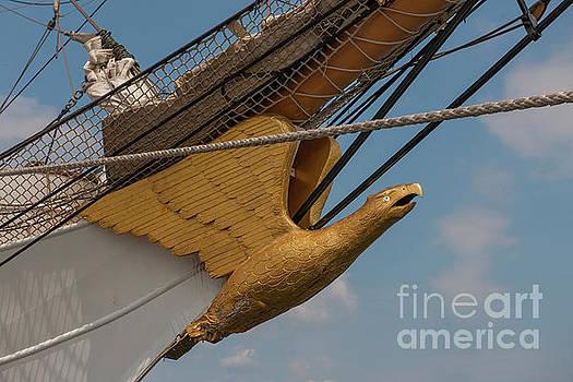 Dale Powell - Barque Eagle Masthead