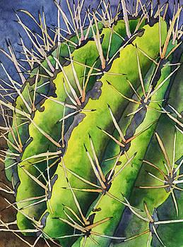 Barrel Cactus by Stacy Egan