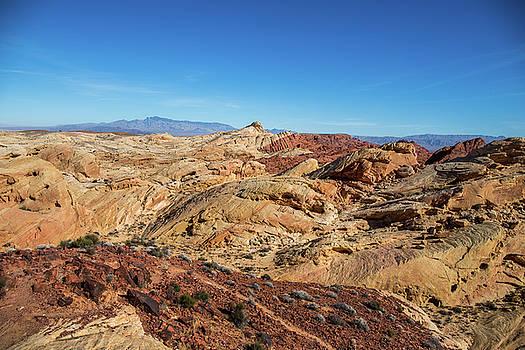 Barren Desert by Ed Clark