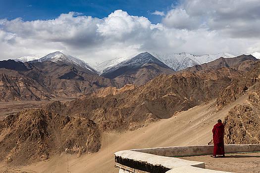 Barren Himalayas by Marji Lang