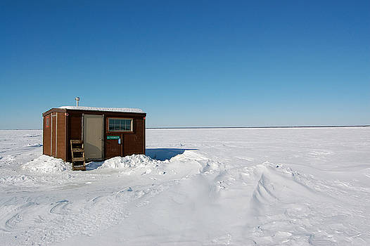 Barren Tundra by Tess Haun