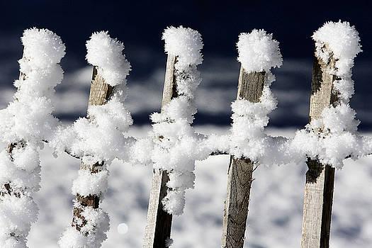 Barriere En Bois Recouverte De Neige Les Contamines Montjoie Haute Savoie by Catherine Leblanc