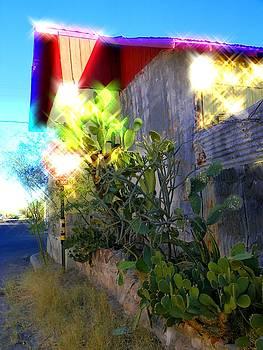 Barrio Reflection by Elma Sulek