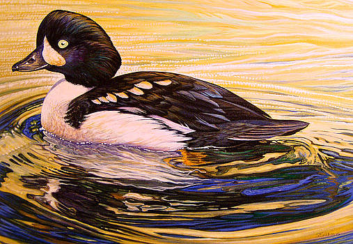 Barrows Goldeneye by Shari Erickson