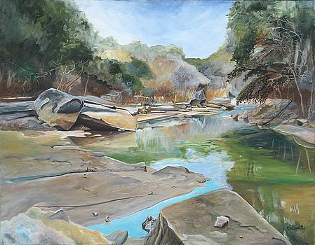 Barton Creek Dry Spell by Ricardo Calzadilla