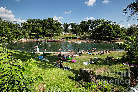 Herronstock Prints - Barton Springs Pool is perfect for a picnic, swim, and a relaxin