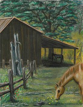 Barton's Barn by Gail Finn
