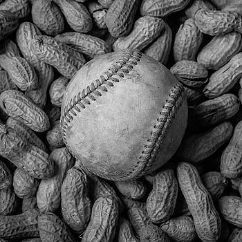 Terry DeLuco - Baseball and Peanuts Black and White Square