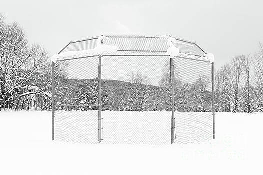 Baseball Backstop in the Snow by Edward Fielding