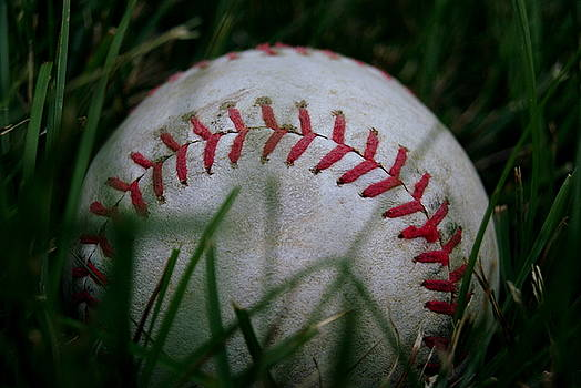 Baseball by Diane Reed