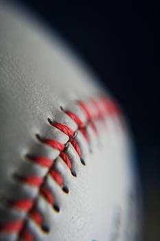 Baseball Fan by Rachelle Johnston