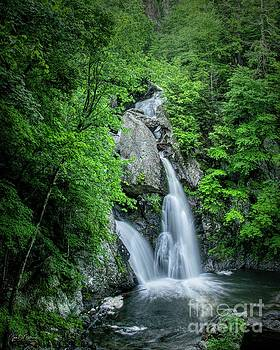 Bash Bish Falls II by Jan Mulherin
