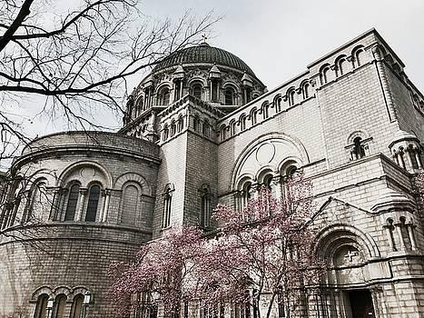 Basilica by Leslie Brashear