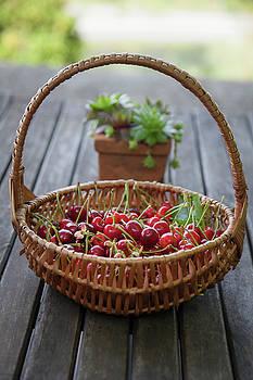Basket Full Of Cherries 2 by Matjaz Preseren