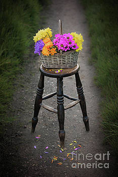Svetlana Sewell - Basket of Flowers
